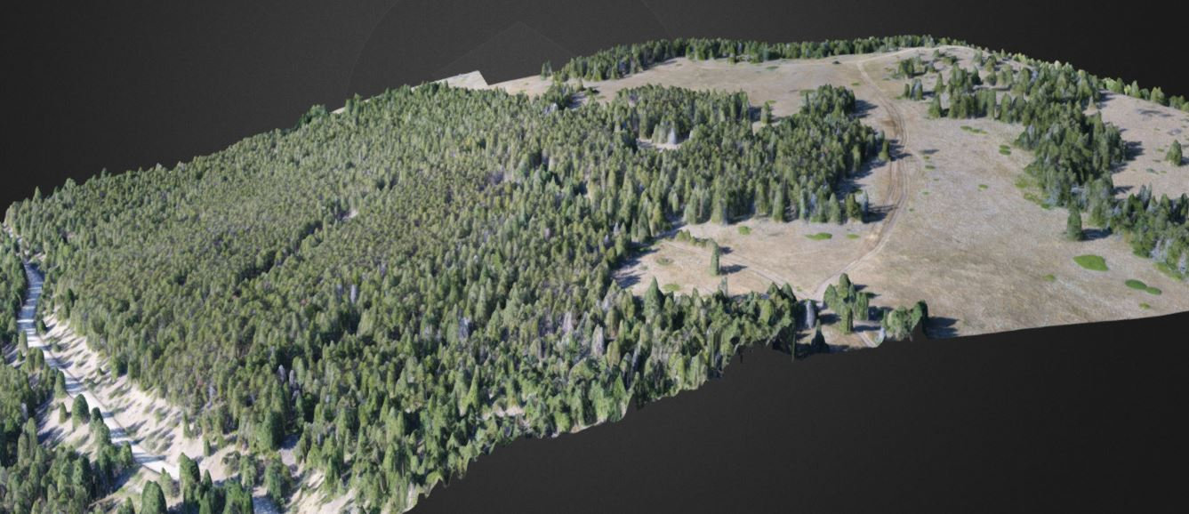 3D Survey and Mapping