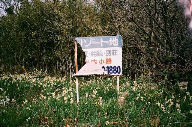 33880026のコピー.jpg