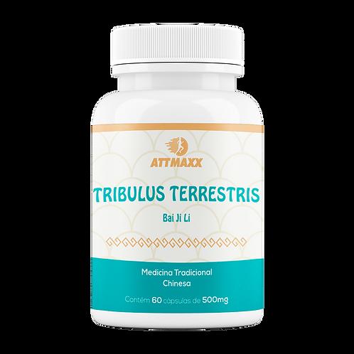 TRIBULUS TERRESTRIS (BAI JI LI) 60 CÁPSULAS 500 MG