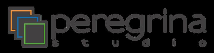 logo_p.STUDIO.png