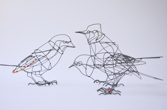 Little birds in the garden