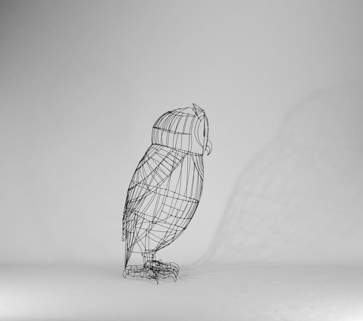 Owl / big size
