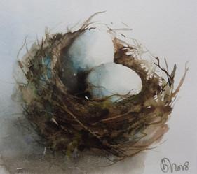 Nid de poule? / Chicken nest?