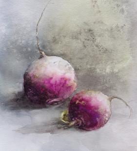 Navets bio / Organic turnips