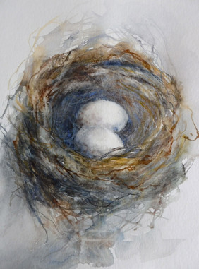 Comme on fait son nid / Nest