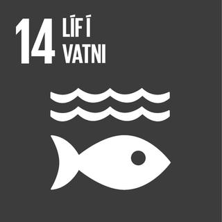 •Afgerandi forysta í     lausnum sem hafa jákvæð    umhverfisáhrif •Starfað er eftir vottaðri     umhverfisstjórnun skv.      ISO14001