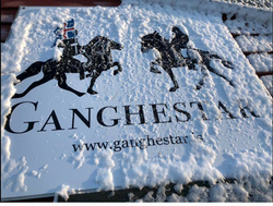 Our logo covered in ice