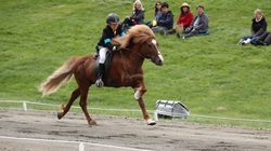 Our son competing