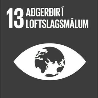 •Áhersla í stefnumótun á      umhverfisvænar lausnir      sem styðja raunhæfa      samfélagsþróun •Ráðgjöf í fageymum •Loftslagsmarkmið  •Samstarf við Kolvið og      Votlendissjóð vegna kol-       efnisjöfnunar •Starfað er eftir vottaðri      umhverfisstjórnun skv.      ISO 14001