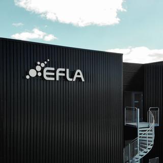 EFLA_lynghals.jpg
