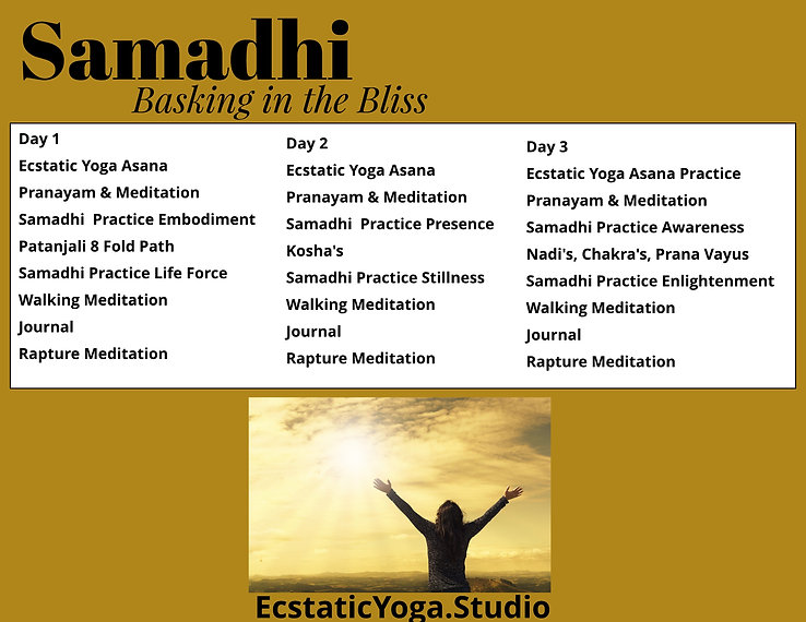 Samadhi Immersion Schedule (3).jpeg