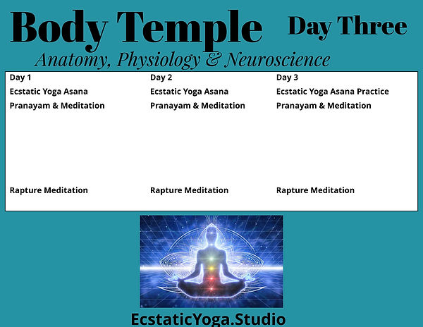 Body Temple  Immersion Schedule Day thre