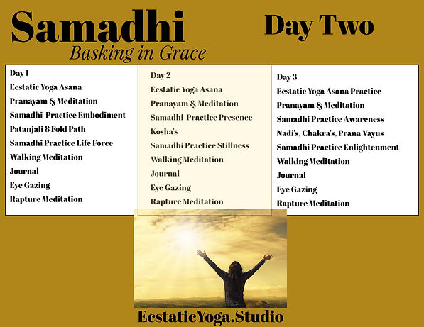 Samadhi Immersion Schedule (7).jpeg