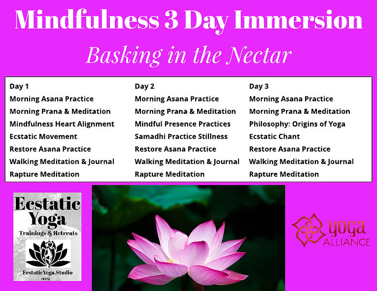 Mindfulness Course and Retreat.jpeg