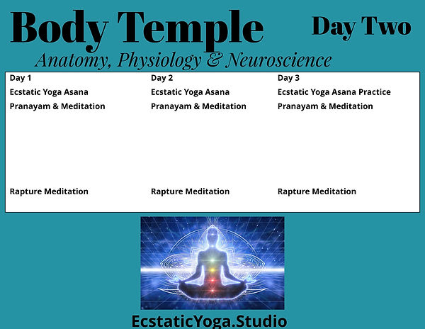 Body Temple  Immersion Schedule Day two.