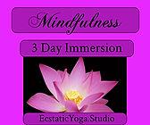 EY Mindful Immersion.jpeg
