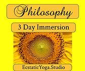 EY Philosophy Immersion.jpeg