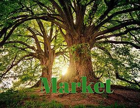 Library Market Thumbnail.jpeg