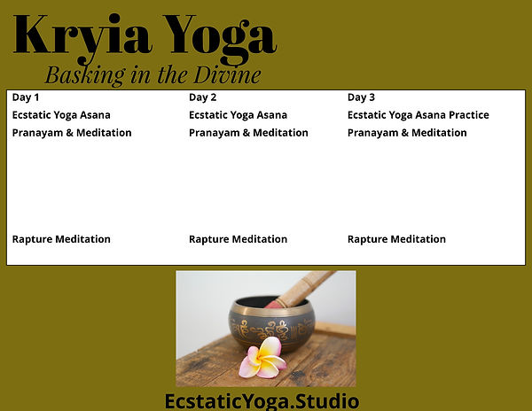 Kryia Yoga Immersion Schedule Day One (2