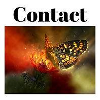 Contact forms logo (1).jpeg
