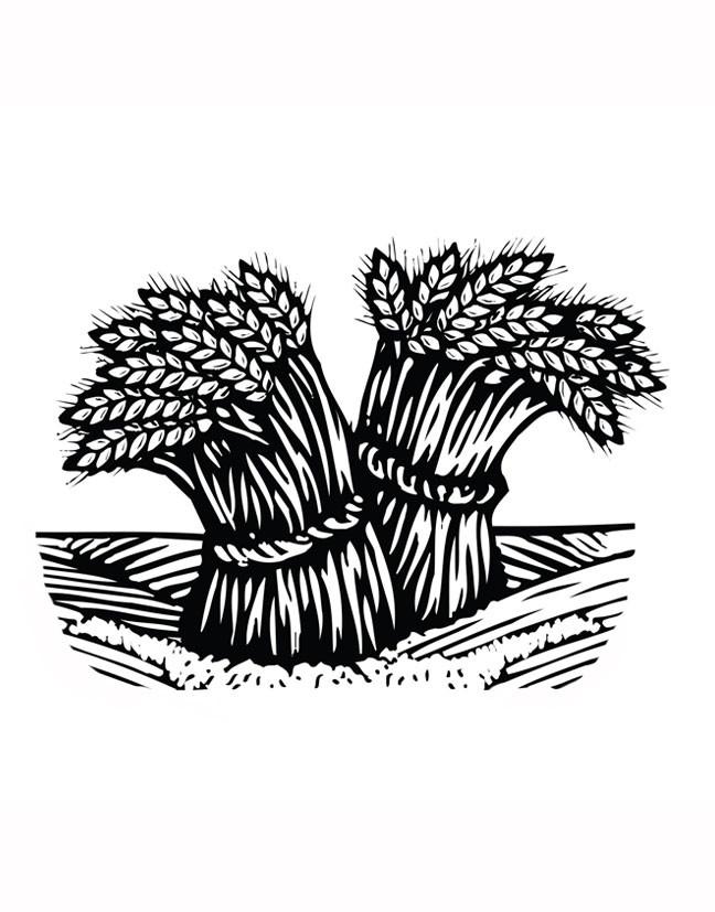 Bushels-of-Hay.jpg