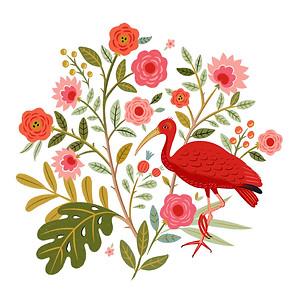 Scarlett Ibis