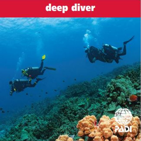 E-Learning Deep Diver