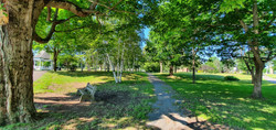 Wilmot Park