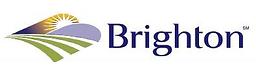 Brighton logo 1.png