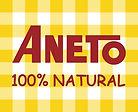 Logo Aneto ALTA RESOLUCION.jpg