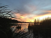 Long Lake wetlands at sunset