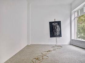 Pia Stadtbaeumer-installation view_Little Dove, my littele Dove (Ketupa ketupo)_Photo_Achi