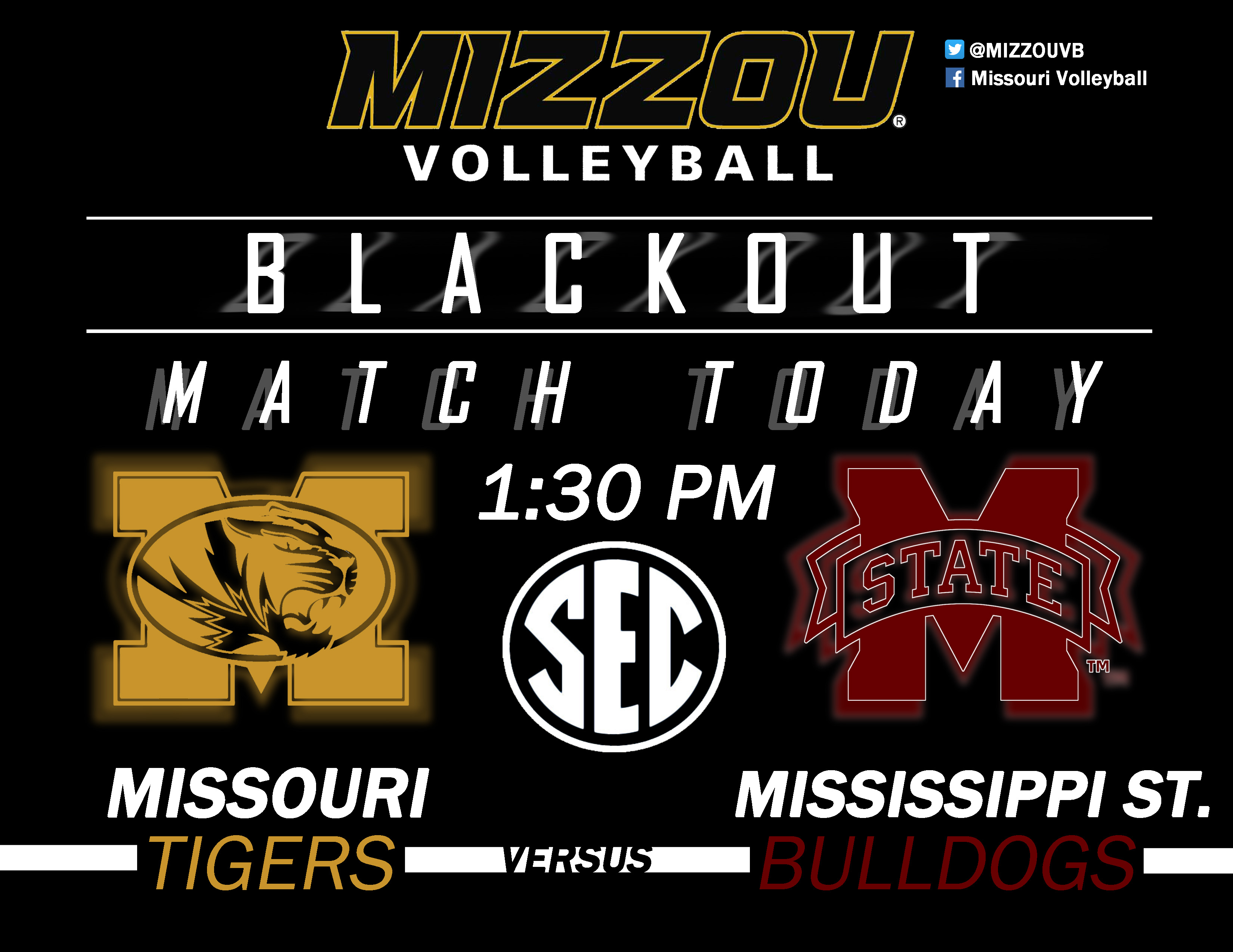 SEC Volleyball Match Flyer