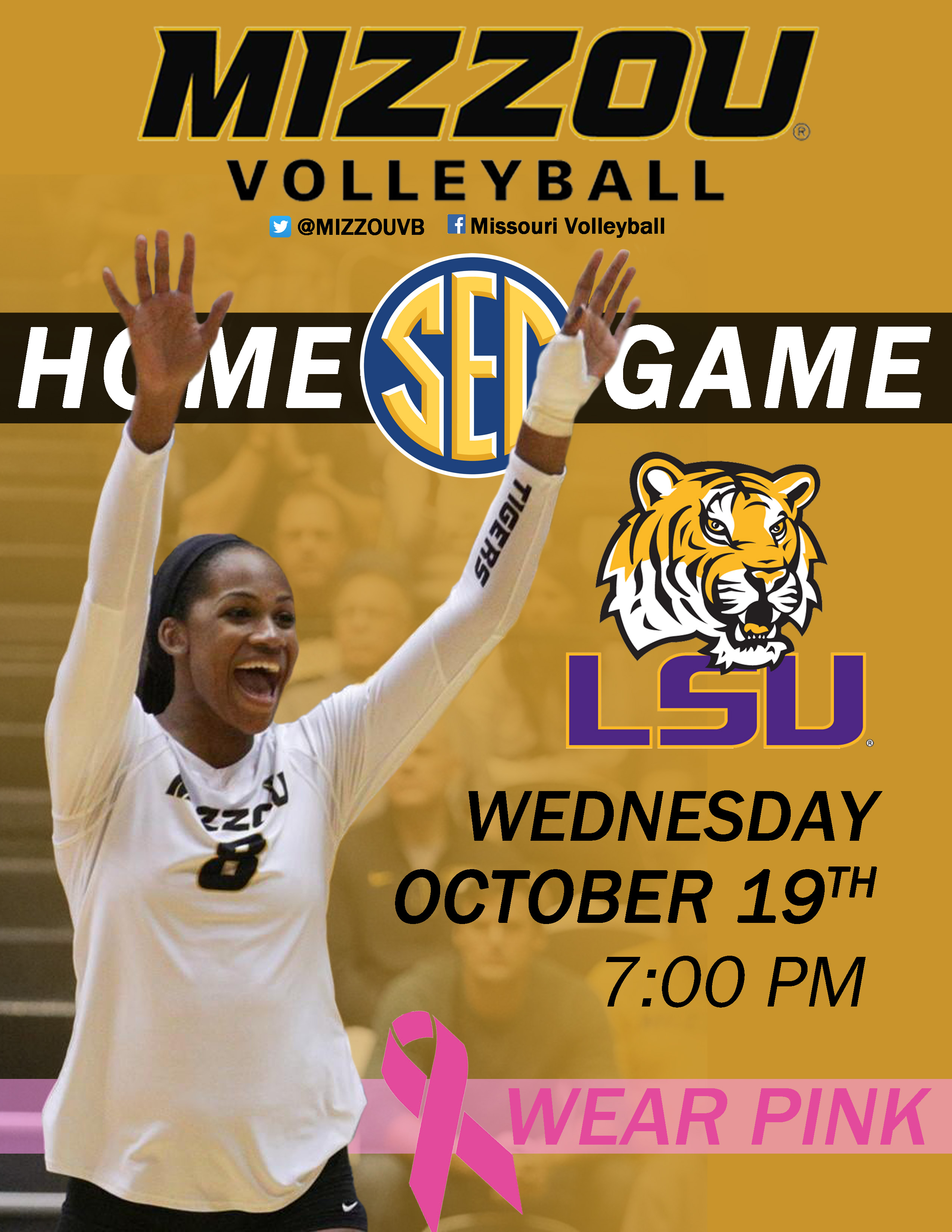 Mizzou Volleyball Email Flyer