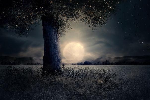 night-2539411_1920.jpg