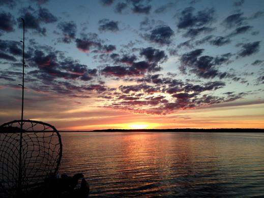 net sunset.jpg
