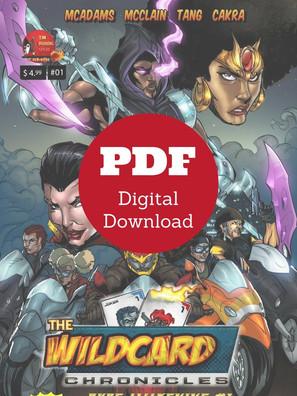 Wildcard Chronicles Rude Awakening Issue #1