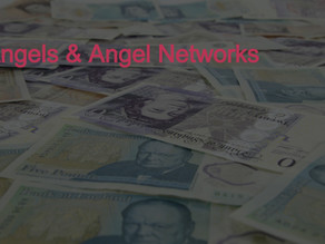 Equity Funding: Angels and Angel Networks