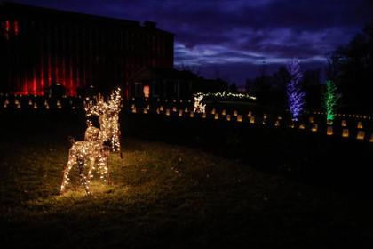 Jim Beam Luminary Lanterns