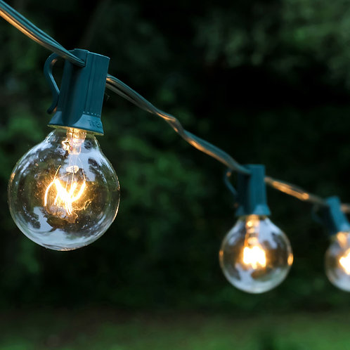 Electric Globe String Lights 25L