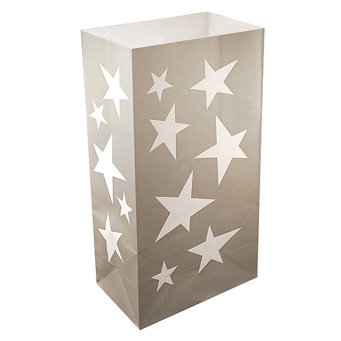 Paper Bag Luminaries - Silver Stars 24ct