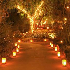 Luminary Bags Pathway Lighting