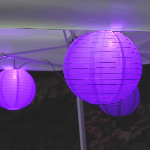 Electric Lights Paper Lantern Kit - Purple