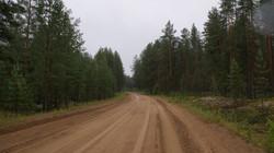 д. Берег, Вашкинский район