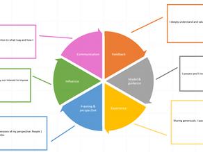 A Mentoring Wheel