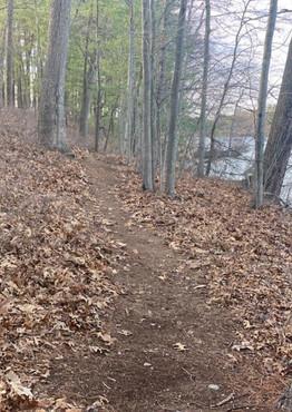 walking trails 2.jfif
