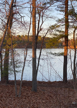 lake view.jfif