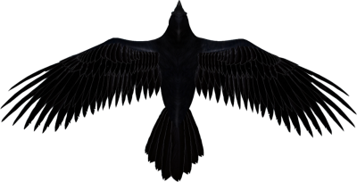 AlqYR8-raven-transparent-picture.png