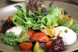 Gartentomaten mit Büffelmozzarella