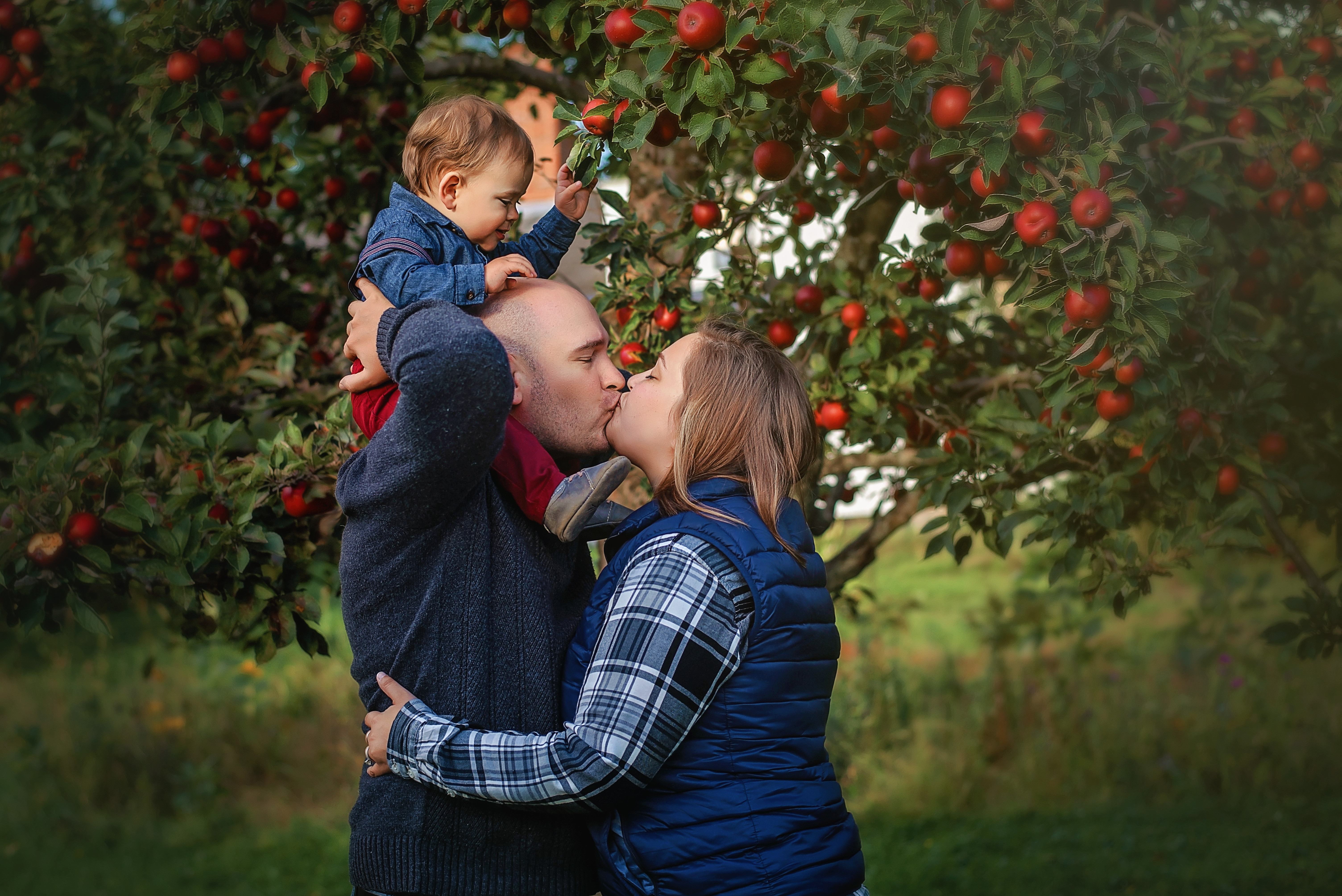 Apple Orchard Mini Session